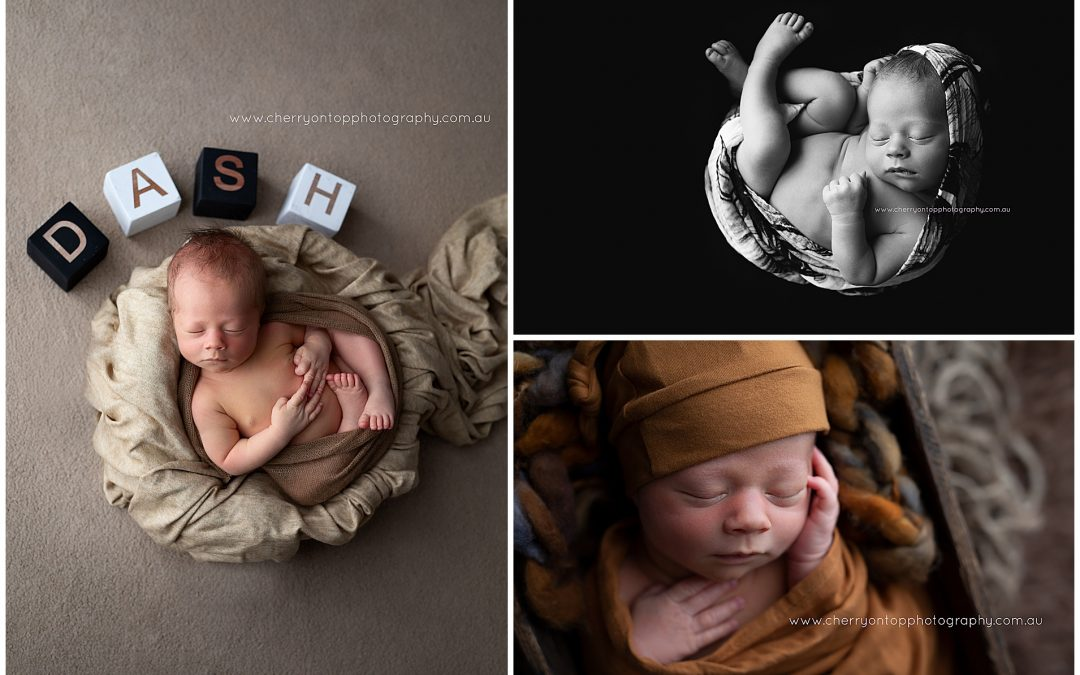 Dash | Newborn Photography Sydney