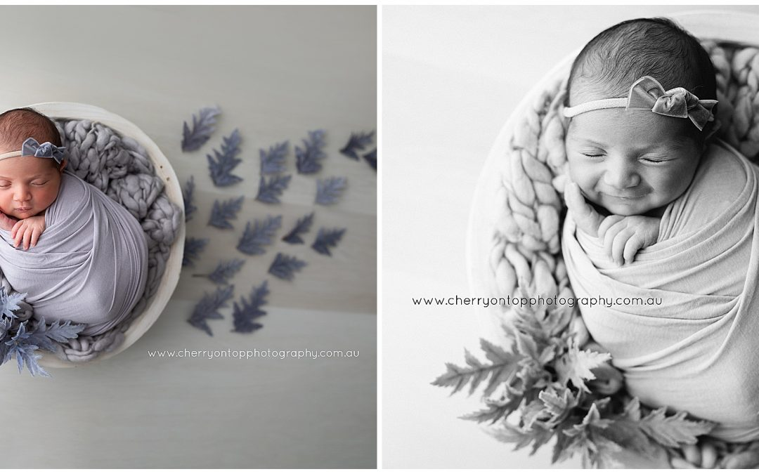 Ivy | Newborn Photography Sydney