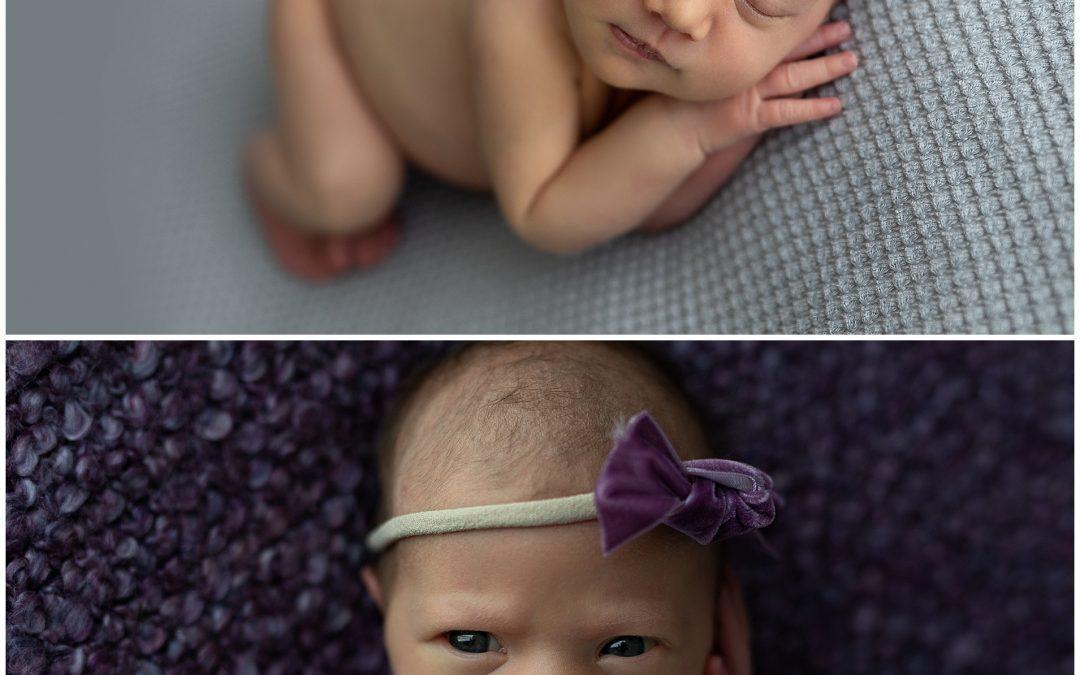 Alaska | Newborn Photography Sydney