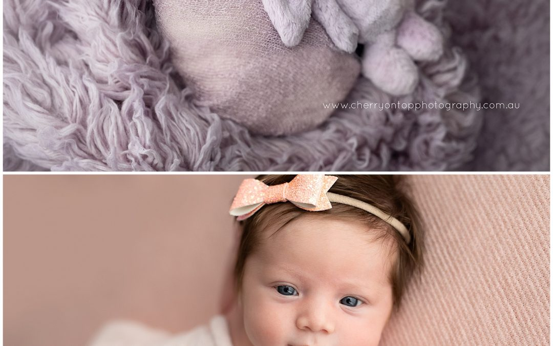 Halle | Newborn Photography Sydney