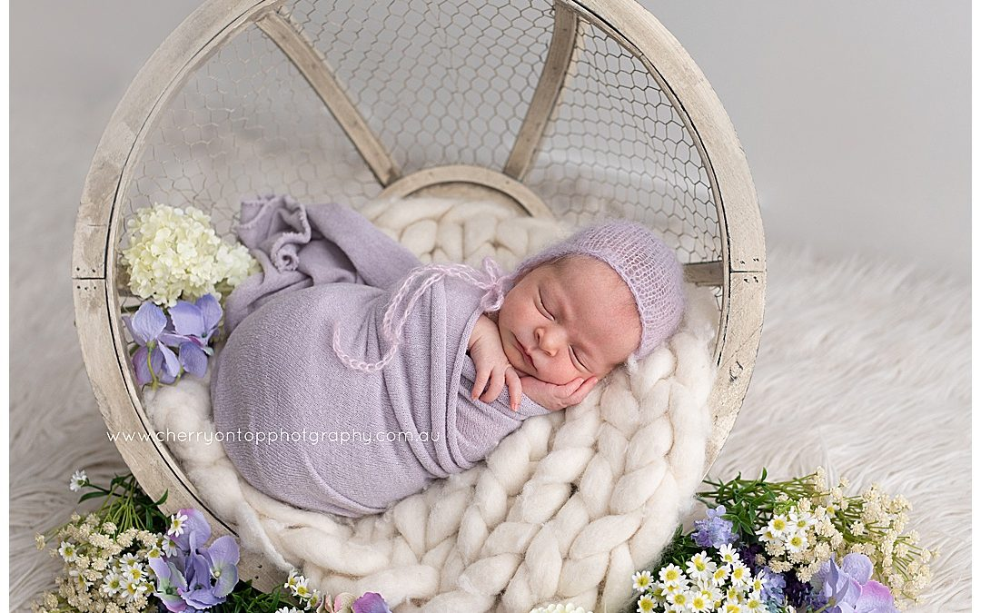 Elia | Newborn Photography Sydney